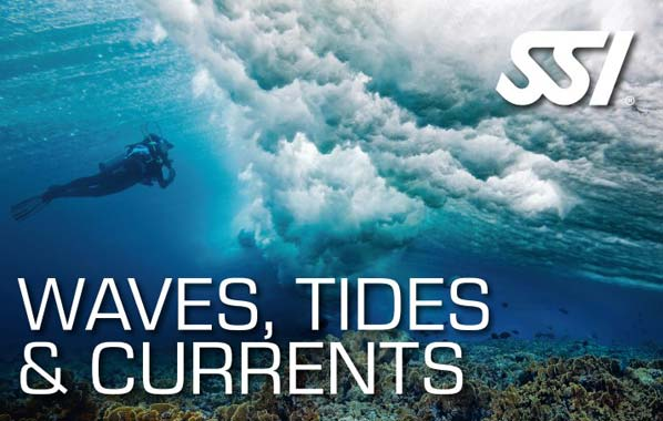 SSI Waves, Tides and Currents